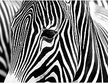 Fototapete Zebra 396 x 280 cm Vlies Wand Tapete