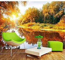 Fototapeten 3DAhornwald, Fluss Moderne Vlies