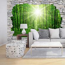 Fototapeten - 3D Fototapete Sunny Forest Mauer