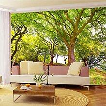 Fototapeten 3D Grüner Wald Vlies Wandbilder