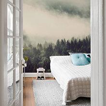 Fototapeten - Fototapete Nebel im Wald 02 -