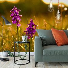 Fototapeten - Fototapete Vliestapete Blumen im