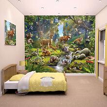 Fototapeten - Fototapete Wald-Abenteuer