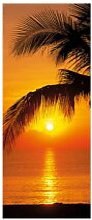 Fototapeten - Türtapete Palmy Beach Sunrise