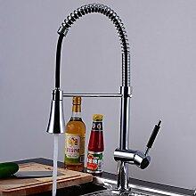 Foxi Küche Waschbecken Wasserhahn,Frühling Mit