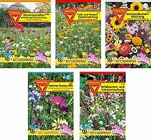 Frankonia-Samen/Blumenmischungen