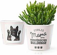 Französische Bulldogge Deko Geschenk - Blumentopf