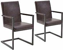Freischwinger Stühle mit Armlehne 2er-Set braun |