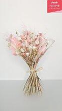 freundin Home Collection Trockenblume Pink