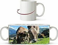 friedliche Kühe auf einer Weide in Österreich