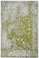 Froschkönig24 18861 Teppich Grün 120x170 cm