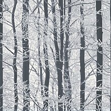 Frosted Holz Tapete–Arthouse 670200