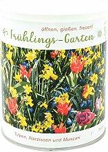 Frühlings - Garten Anzuchtset - Ein geballter