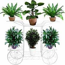 FullBerg Metall Blumenregal Pflanzentreppe für