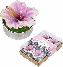Fun Mini-Kerzen–Tropische Orchidee Blumen Set von 6Teelichter