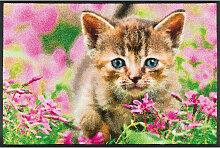 FUßMATTE 50/75 cm Katze Grün, Multicolor, Rosa
