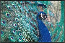 FUßMATTE 50/75 cm Vogel Grün