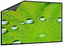 Fußmatte Blatt mit Wassertropfen B x H: 85cm x 60cm von Klebefieber®