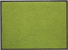 Fußmatte Washtex Lako Farbe: Grün