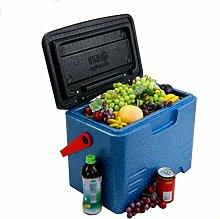 FWB@ED Auto Kühlschrank-Kühlbox 22L Tragbare