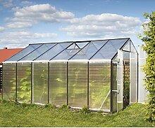Gampre Aluminium Gewächshaus-Set, Gartenhaus, Pflanzenhaus Sanus L10 silber // 220x430x215 cm // Frühbeet, Aufzucht und Treibhaus