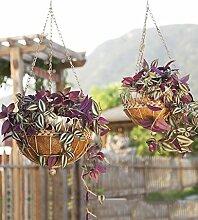 GAOWUFENGYL Hängende Blumentöpfe Im europäischen Stil pastorale Gartenmauer Blumentopf Regale Eisen Wand hängenden Blumenkorb Versammlung für Blumen ( farbe : C )