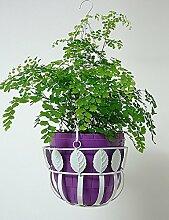 GAOWUFENGYL Hängendes Korbblumentopfgestell Eisen hängen fleischig Pflanze Regal Europäische Art einfaches hängendes Blumen-Korbgestell Versammlung für Blumen ( farbe : Weiß , größe : 23cm*13.5cm*58.5cm )