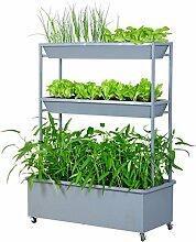GAPHUAJIA cyjz® Blume Racks, Eisen Gemüse