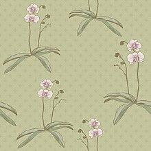 Garden 12951 Vliestapete Phalaenopsis Orchidee Violett Hellgrün