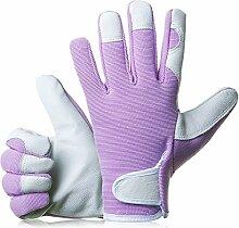 gardenersdream Leder Garten-/Arbeitshandschuhe–Medium Komfortable passgenaue Premium Qualität Handschuhe–Ideal Geschenk für Männer, Frauen (Feminine/Damen) bei einem Jubiläum, Geburtstage oder Weihnachten, viole