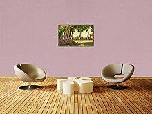 Garderobe Banyan-Baum im Sukhothai Historical Park, Thailand Wandgarderobe M0811 | Querformat - 69x40 (BxH) | Dekorfolie