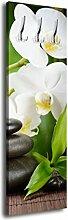 Garderobe mit Design Beauty G417 40x125cm Wandgarderobe Orchidee Asia Entspannung