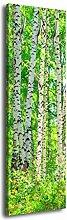 Garderobe mit Design Birkenhain G257 40x125cm Wandgarderobe Birke Wald Bäume