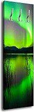 Garderobe mit Design Grünes Polarlicht G296 40x125cm Wandgarderobe Arktis Nacht Lich