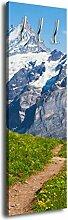 Garderobe mit Design Sommerwiese Alpen G258 40x125cm Wandgarderobe Alm Sommer Grün