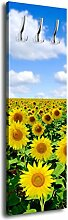 Garderobe mit Design Sonnenblumenfeld G249 40x125cm Wandgarderobe Sonnenblume Feld Natur