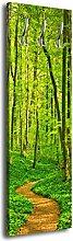 Garderobe mit Design Waldpfad G244 40x125cm Wandgarderobe Wald Baum Natur