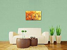 Garderobe Pusteblume Orange Wandgarderobe M0390 | Querformat - 69x40 (BxH) | Dekorfolie Kratzschutz Glanz
