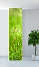 gardinen-for-life Flächenvorhang Frühlingswiese,
