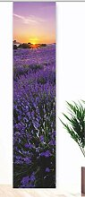 gardinen-for-life Flächenvorhang Lavendelfeld,