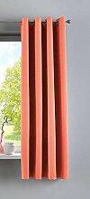 Gardinenbox Vorhang Blickdicht »Newyork« Coralle