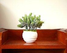 Garten Blumen Bonsai Pflanzen Dekorative Ornamente Heimtextilien Schmuck In Der Stube Fenster Simulation Kleiner Topfpflanzen Sukkulenten, F