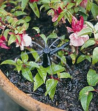 Garten Micro-Bewässerung Sprinkler Full Circle PK10