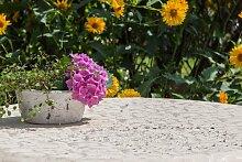 Garten-Tischdecke ABWASCHBAR mit Acryl und BLEIBAND, Form und Größe sowie Farbe wählbar,150 cm rund sahara sand London