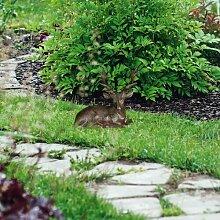 Gartenfigur Hirsch Hamish
