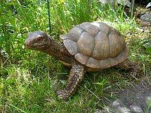 Gartenschildkröte 33 cm Figur Dekoration Gartenfigur Garten