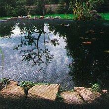 GartenStar 3056600 Teichabdecknetz 4x5m , 20x20mm