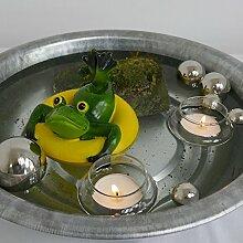 Gartenzaubereien Miniteich-Set, Frosch i.Ring