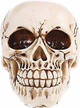 Gazechimp 3D Menschliches Schädel Figuren Replik Skelett Modell Medizinisches Lehrmittel Halloween Party Dekoration