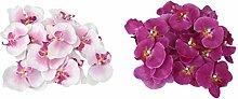 Gazechimp 40x Kunstblumen Orchidee Blumen Köpfe , Schmetterlingsorchidee Blüten Blumenköpfe Hochzeit Dekoration